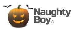 naughty boy logo image