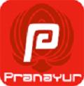Pranayur Nl Logo
